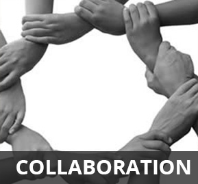 Module Collaboration